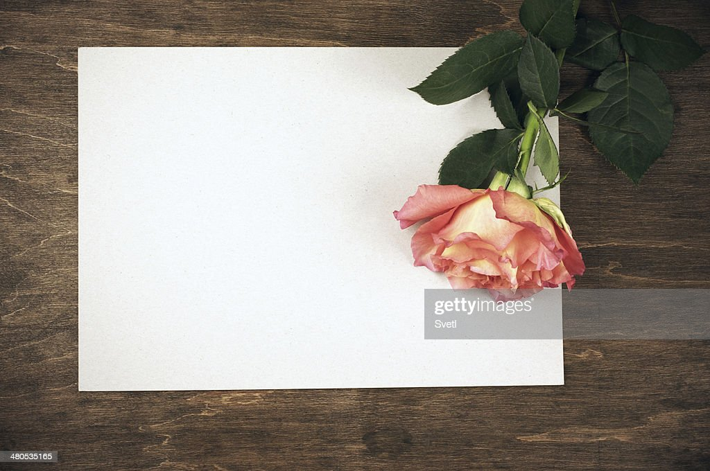 Rose and blank sheet : Stockfoto
