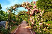 Pink flower archway in Jardin de Plantes garden, Paris, France