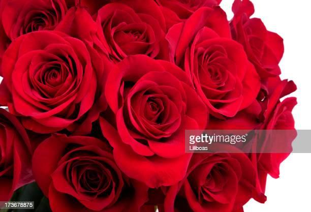 Bouquet de rosa
