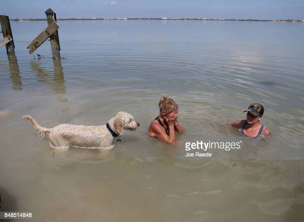 Rose Byrnes Brianna Byrnes and Misty cool off in the ocean as they take a break from cleaning up debris at their home after hurricane Irma passed...