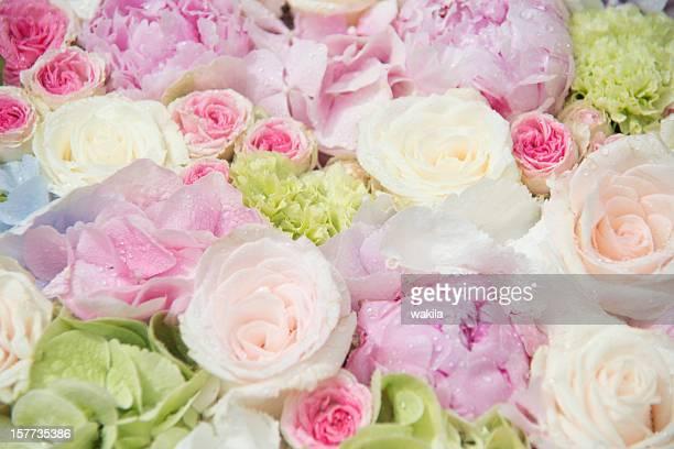 rose Composizione di fiori-bunte Rosen weiß rosa rosa