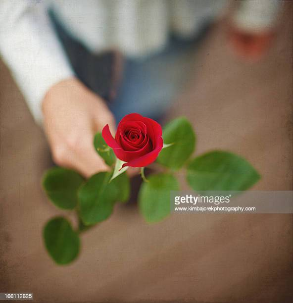 A Rose For You!