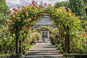 Rose garden in the Botanic Gardens, Canterbury, South Island,  New Zealand