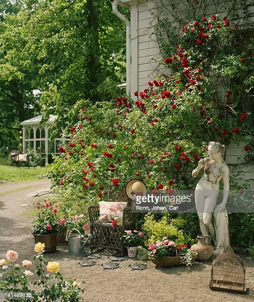 Rose garden with women statue