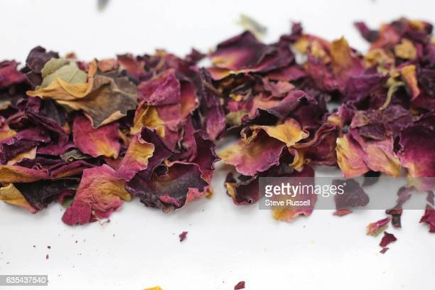 TORONTO ON FEBRUARY 7 rose Ingredients for blending your own tea include lavender rose leaves orange camomile star anise and turmeric