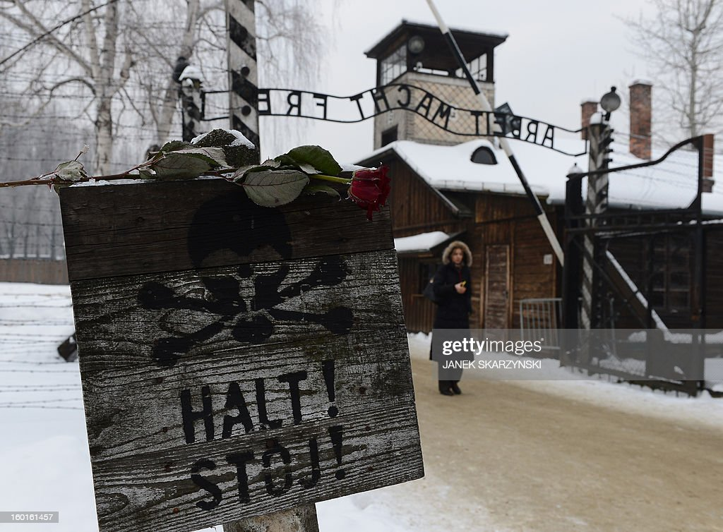 A rose is placed on a sign depicting a skull and reading 'Stop' in front of the gate of the former Nazi concentration camp Auschwitz-Birkenau in Oswiecim, Poland, on Holocaust Day, January 27, 2013. A ceremony took place at the site 68 years after the liberation of the death camp by Soviet troops, in rememberance of the victims of the Holocaust. AFP PHOTO / JANEK SKARZYNSKI