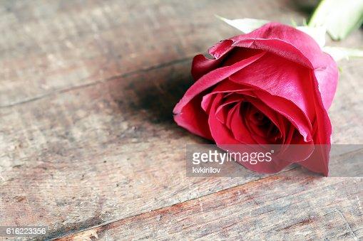 Rose auf Holz : Stock-Foto