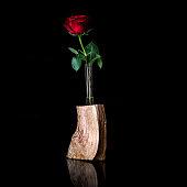 Rose in Blumenvase