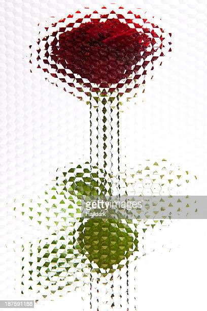 A rose seen behind beveled glass with hexagon pattern
