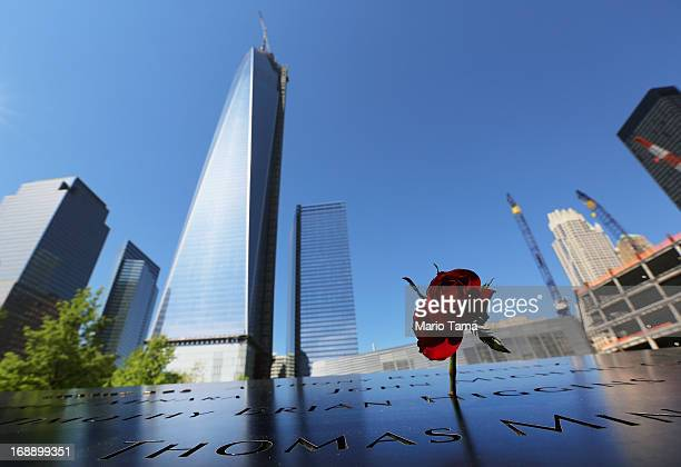 A rose stands at the 9/11 Memorial as One World Trade Center now the tallest building in the United States continues to be constructed on May 16 2013...