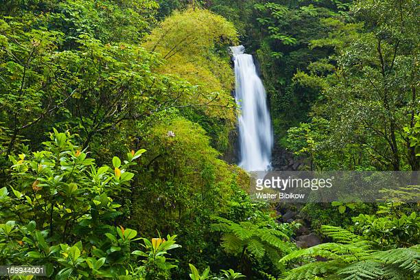 Roseau, Dominica, Trafalgar Falls