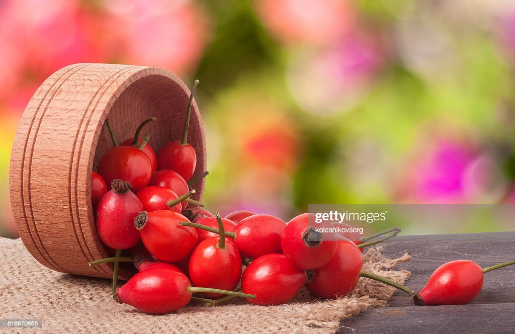 rosehips in wooden bowl on a dark board with sackcloth : Stock Photo