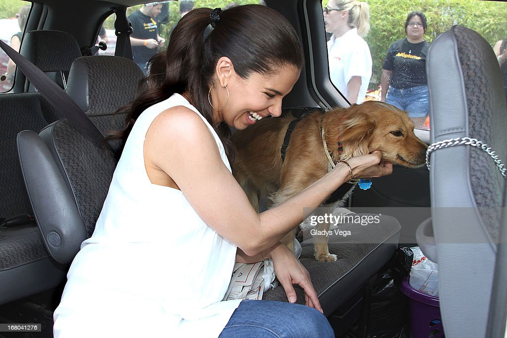 <a gi-track='captionPersonalityLinkClicked' href=/galleries/search?phrase=Roselyn+Sanchez&family=editorial&specificpeople=202260 ng-click='$event.stopPropagation()'>Roselyn Sanchez</a> attends Pet SOS Food Drive at K Mart Plaza Las Americas on May 4, 2013 in San Juan, Puerto Rico.