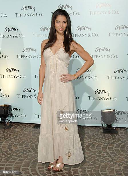 Roselyn Sanchez during Tiffany Co Celebrates The Launch Of Frank Gehry's Premiere Collection On Rodeo Drive Arrivals at Tiffany Co in Beverly Hills...