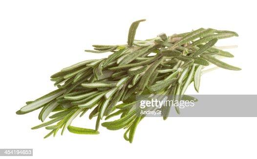 Rosemary : Foto de stock