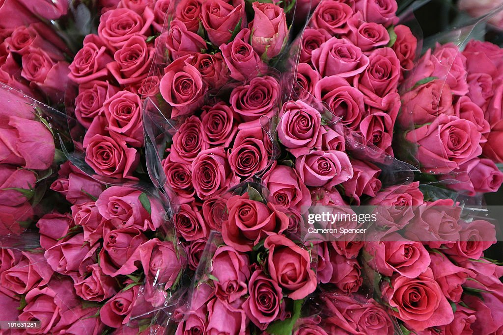 Roses are displayed during Valentines Day at Sydney Flower Market on February 14, 2013 in Sydney, Australia. Due to an unusually hot January in Australia an increasing number of roses have been sourced from South America and Africa to ensure Valentines supplies don't run out.