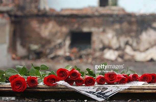 Roses are seen at a make shift memorial at a school September 6 2004 in Beslan southern Russia More than 350 people died after Chechen militant...