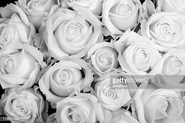 roses pour assister à des funérailles