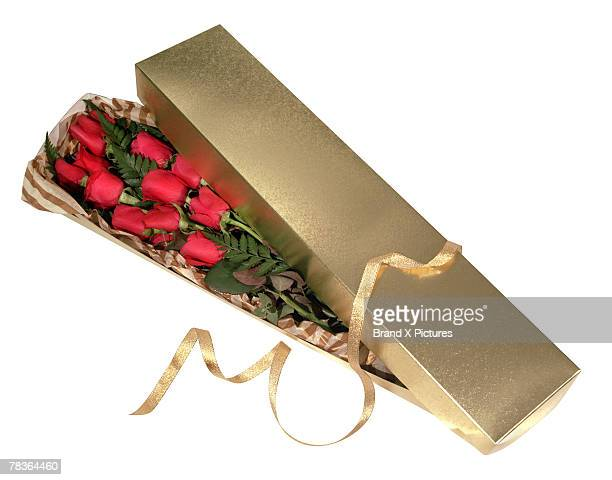 Roses in a gift box