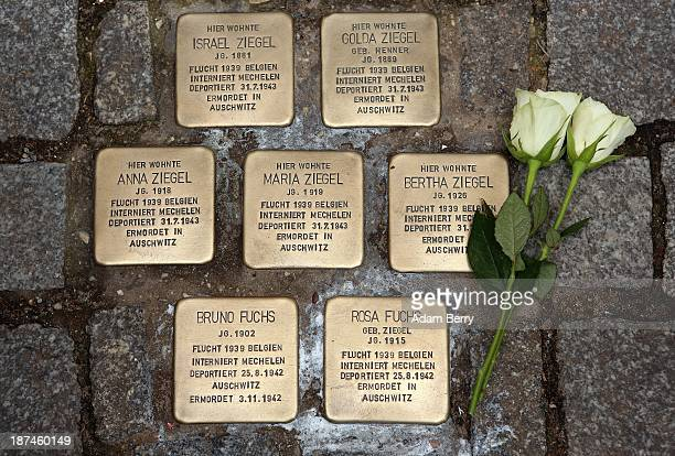 Roses lie next to 'Stolperstein' or Stumbling Blocks small cobblestonesized plaques by artist Gunter Demnig dedicated to the memory of victims of the...