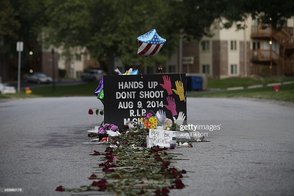 Roses line the street leading to a makeshift memorial for Michael Brown on August 22 2014 in Ferguson Missouri Crowds continue to gather to march...