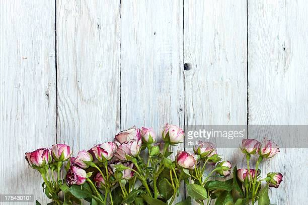 Roses on aged wooden table