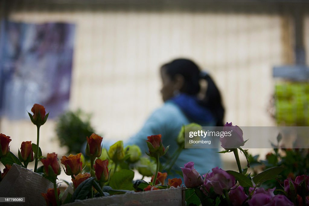 Roses sit in buckets as an employee bundles flowers at the Dramm & Echter growing facility in Encinitas, California, U.S., on Tuesday, Nov. 12, 2013. The U.S. Census Bureau is scheduled to release wholesale inventories figures on Nov. 15. Photographer: Sam Hodgson/Bloomberg via Getty Images