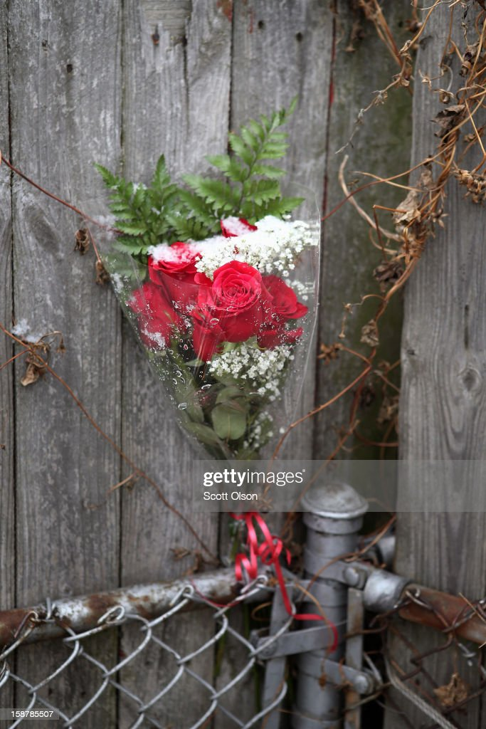 Roses sit on a fence near the spot where Federico Martinez was gunned down two days ago on December 28, 2012 in Chicago, Illinois. Martinez was believed to be the 499th murder victim of the year in Chicago when he was killed on December 26. After news organizations began reporting about the city's 500th murder victim, the Chicago Police Department's News Affairs Office issued a statement stating Chicago's murder total remains at 499 because classification of one death investigation remains pending. They would not specify which death is pending. The total number of murders in the city has only once exceeded 500 victims since 2004. The murder rate is up about 11 percent from 2011, much of which is attributed to growing gang violence.