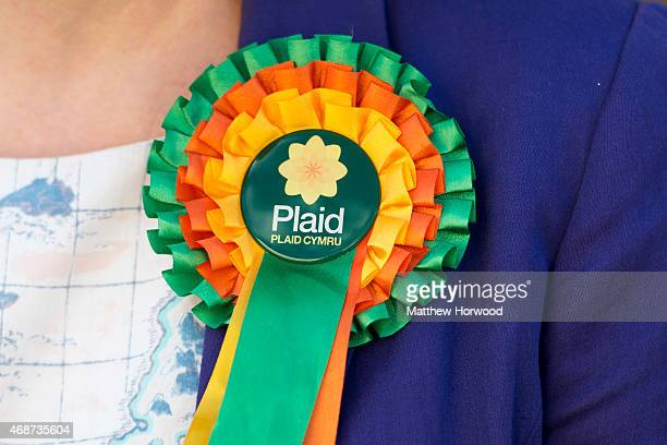 A rosette worn by Plaid Cymru leader Leanne Wood as she campaigns in Ton Pentre on April 6 2015 in Rhondda Wales Britain goes to the polls in a...