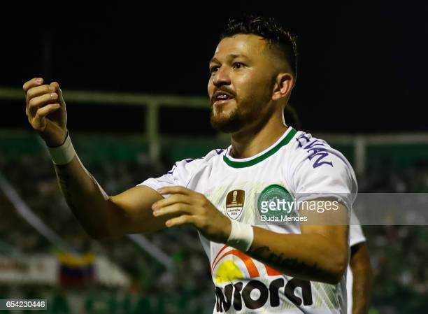 Rossi of Chapecoense celebrates a scored goal against Lanus during a match between Chapecoense and Lanus as part of Copa Bridgestone Libertadores...