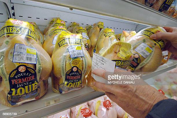 A costumer chooses a freerange chicken in a supermarket in Rots Western France 22 February 2006 European veterinary experts resumed talks totday on...