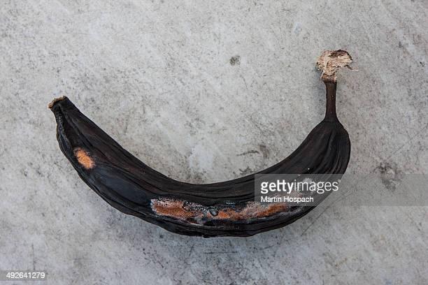 Rotting banana, close-up