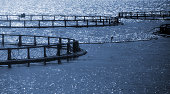Round cages of Norwegian fish farm for salmon growing
