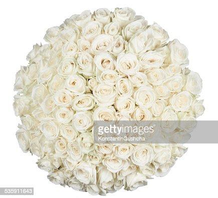 De forma of roses (expressão inglesa) : Foto de stock