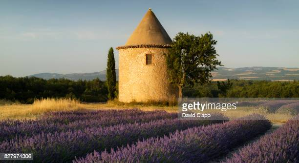 Round tower and lavender near Sault in Provence, France