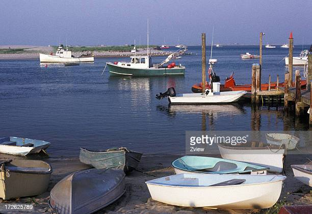 Row Boats On Shore Of Harbor in Cape Cod