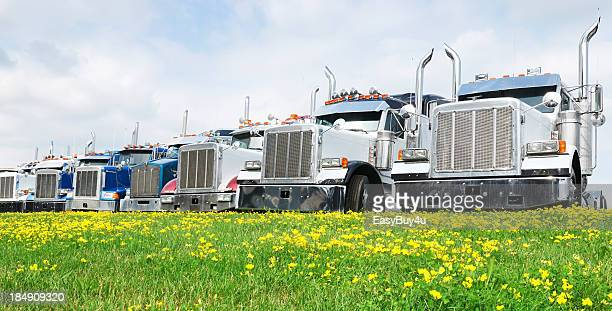 Row of 7 tractor trailers parked in front of a grassy field