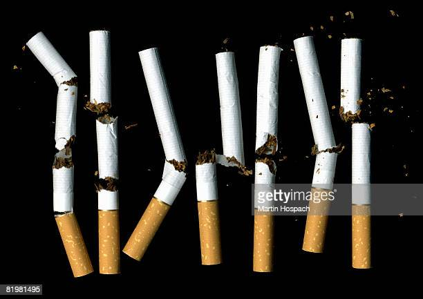 A row of broken cigarettes