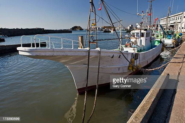 Row of commercial fishing boats