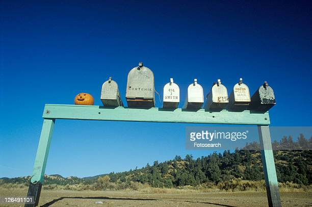 Row of country road mailboxes and pumpkin