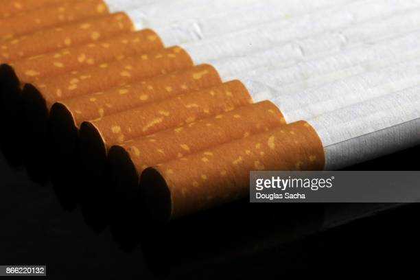 Row of Filtered Cigarettes
