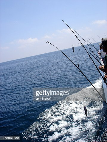 Row of fishing rods on a deep sea fishing boat stock photo for Deep sea fishing poles
