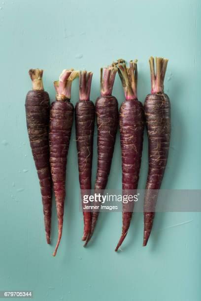 Row Of Fresh Purple Carrots.
