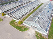 row of glass greenhouses for vegetable production. aerial photo