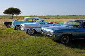 Row of low rider show cars