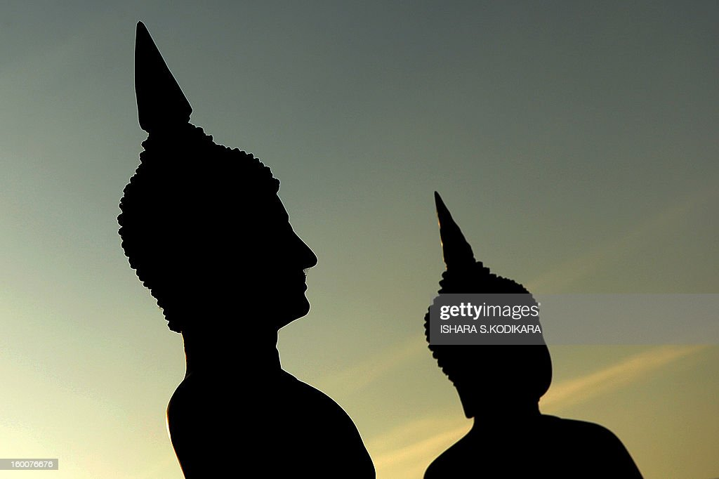 A row of meditating Buddhas is silhouetted qagainst the sky during Poya, a full moon religious festival at the Gangaramaya Temple in Colombo on January 26, 2013. The predominantly Buddhist Island nation marks every full moon as a key religious holiday. AFP PHOTO/ Ishara S. KODIKARA