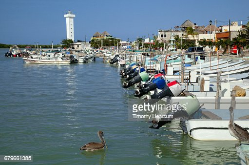 Row of motor boats; town beyond : Stock Photo