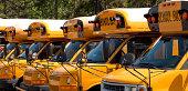 Row of school bus