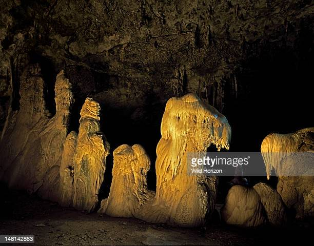 A row of stalagmites that resembles a procession of gargoyles Illuminated by sunlight entering through a sinkhole skylight and reflected from the...