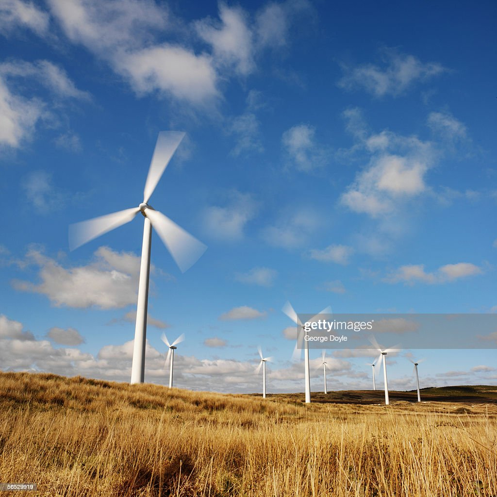 row of wind turbines in a field : Stock Photo
